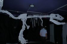 Ночь в музее. Клуб Айсберг