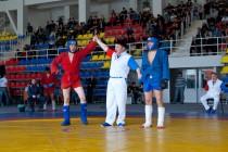Чемпионат по Боевому Самбо