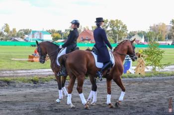 Шляпы, деньги, два коня