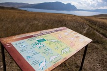 Короткое путешествие длиною в 400 миллионов лет
